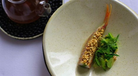 Stuffed And Marinated Chinese Golden Thread Bream, Fermented Grains, Celtuce, Chenpi Oil