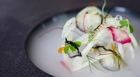 "Winner of S.Pellegrino Award for Social Responsibility with the signature dish:""The Ghost Net"""